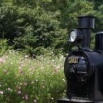 野辺山SLランド・JR鉄道最高地点に行ってきました!~夏の野辺山散策~