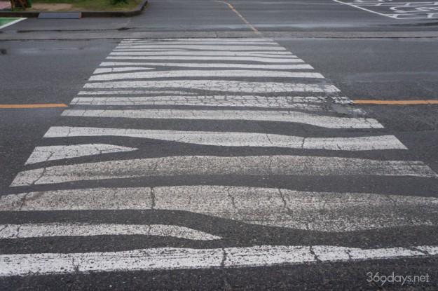 秋吉台サファリランドの横断歩道